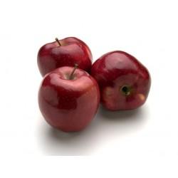 Apple VG Vapo
