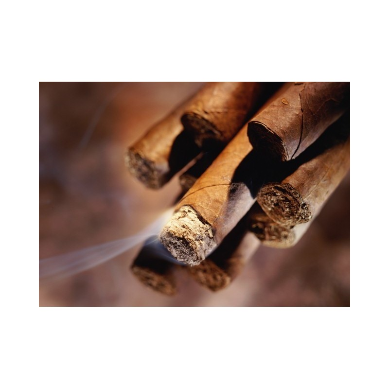 Cigar VG Vapo