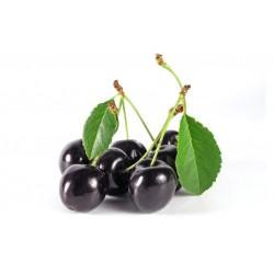 Black Cherry VG Vapo