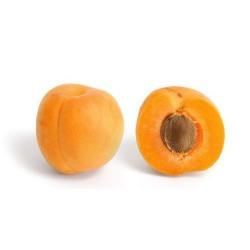 Apricot  E-solid