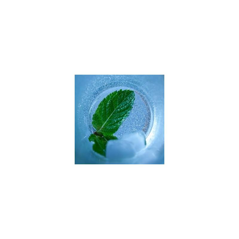 Arctic Mint VG Vapo